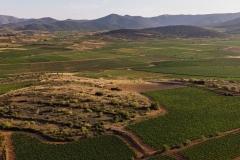 Panorámicas viñedos D.O.P. Cariñena 2021