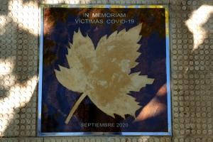 54 ª Fiesta Vendimia - Homenaje D.O.P. Cariñena víctimas covid-19  (27-9-20)
