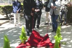 DOP-Carinena-homenaje-covid-fiesta-vendimia-7